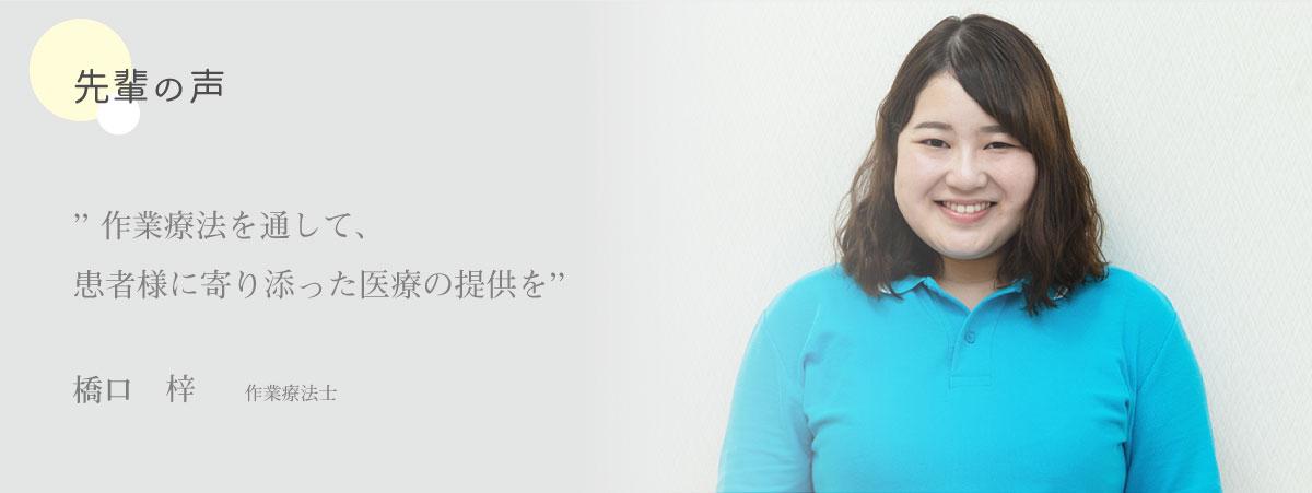 先輩の声 橋口 梓